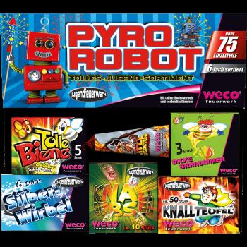 Pyro Robot